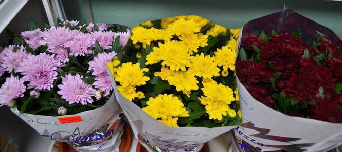 Купить цветы в камне-на-оби маленький подарок своими руками на 8 марта